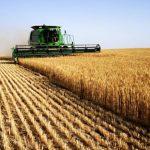 波黑市場農產品銷售價格大幅下降